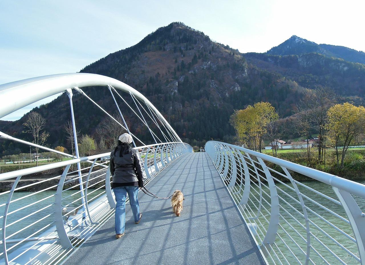 bridge-construction-189036_1280